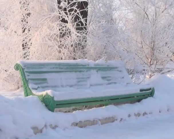 Banco cubierto de nieve — Vídeo de stock