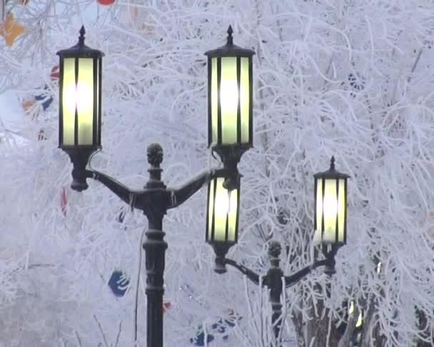 Luces de la calle que brilla intensamente — Vídeo de stock