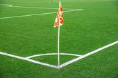 En flagga i ena hörnet av fotbollsstadion — Stockfoto