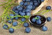 Blueberries fruits and jam — Stock Photo