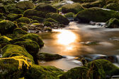 Sun in the river — Stock Photo