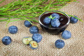 Blueberry fruits and jam — Stock Photo