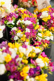Fresh flowers at the market — Stock Photo