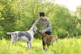Woman playing outside with her dogs — Stock Photo