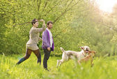 Young beautiful couple walking and playing dogs — Stock Photo