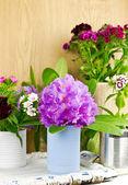 Flores de primavera colores diferentes con jarrones hechos a mano, enfoque selectivo — Foto de Stock