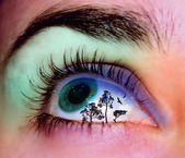 Landscape eye — Stock Photo