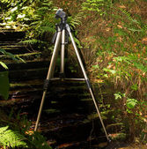 Tripod outdoor — Foto Stock