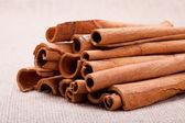 Cinnamon — Photo