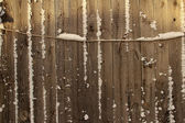 Snow on the fence — Stock Photo
