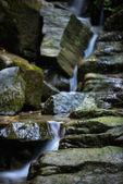 Mountain Stream - Stock Image - Stock Image — Stock Photo