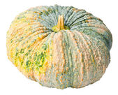 Pumkin — Stock Photo
