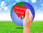 Red paper shape in hand and globe on grass background. environme — Stock Photo