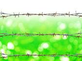 Zardzewiały drut kolczasty — Zdjęcie stockowe