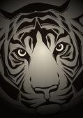Tiger head. Vector illustration — Stock Vector