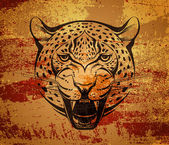 Angry leopard — Stock Vector