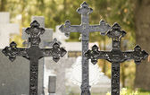 Cemetery with crosses — Stock Photo