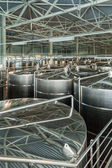 "Interior of winery ""Belje"", a modern winery in Croatia — Stock Photo"