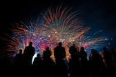 Big fireworks with silhouettes of people watching it — Foto de Stock