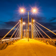 Stock Photo: ZAGREB, CROATI- JULY 12, 2008: Homeland bridge during sunset.