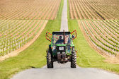 Farmer driving tractor through the vineyard near Ilok, Croatia — Stock Photo