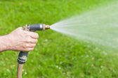 Man's hand holding water sprinkler while gardening, water sprayi — Foto de Stock