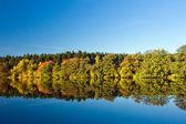 在秋季农村池塘 — 图库照片