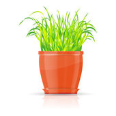 Orange flowerpot with green grass — Stock Vector
