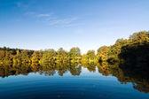Pond in the autumn countryside — Zdjęcie stockowe