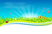 Nature spring - summer background - place for text — Stock Vector