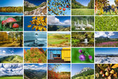 Collage of nature photos — Stock Photo
