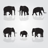 Set of vector shadow elephants eps10 — Stock Vector