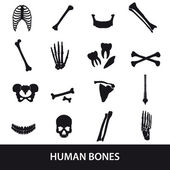 Human bones set of icons eps10 — Stock Vector