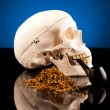Human skull tobacco industry — Stock Photo #38300333