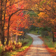 Stock Photo: Vermont countryside road during autumn