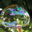 Stock Photo: Soapbubble