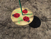 Ouside-wheel-board-swing-with-3-red-and-black-dotted-ladybugs — Stock Photo