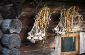 Sheaf of garlic hanging on the wall of the old hut — Stockfoto