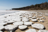 Round ice floes on the sandy shore. — Stock Photo