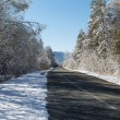 Winter snowy road in a forest and blue sky. — Stock Photo