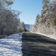 Winter snowy road in a forest and blue sky. — Stock Photo #46064359