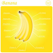 Banana composition — Stock Vector
