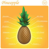 Pineapple composition — Stock Vector