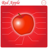 Red Apple infogram — 图库矢量图片