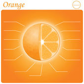 Orange infogram — Vecteur