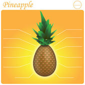 Pineapple Infogram — 图库矢量图片