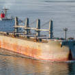 Bulk Carrier — Stock Photo