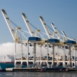 Container Terminal — Stock Photo #38747859