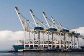 Terminal kontenerowy — Zdjęcie stockowe