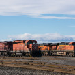 Freight yard — Stock Photo #39067349